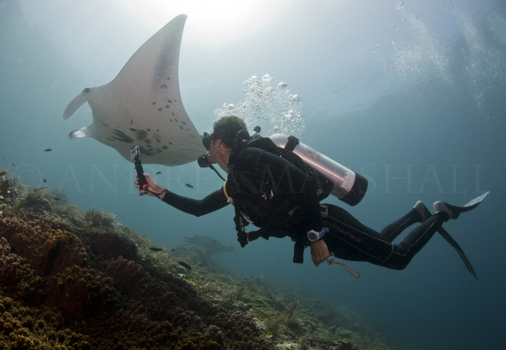 Jason filming reef mantas in Raja Ampat